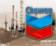 CHEVRON GEOTHERMAL INDONESIA LTD